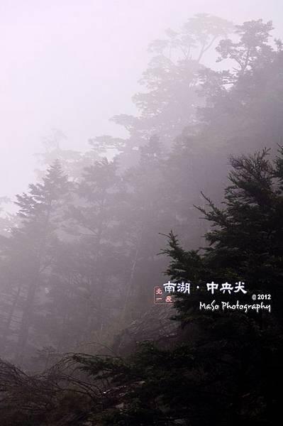 DSC_0496(浮水印.JPG