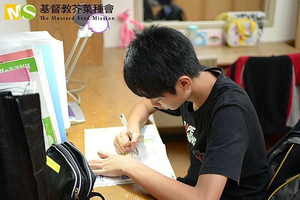 孩子利用課餘時間認真讀書場景