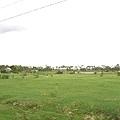 APCA育幼院旁的大草原