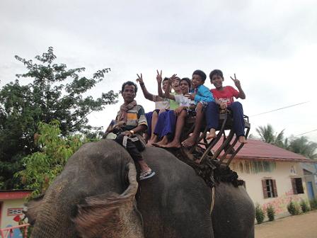 一起騎大象摟!
