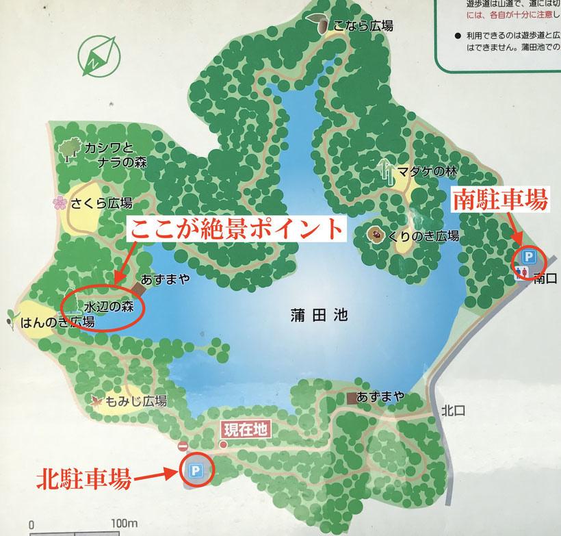 篠栗九大の森5.jpg