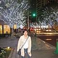 晚上的六本木街道樹上有著美美的銀燈