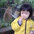 哇~~ 有猴子~ 我也算一隻~