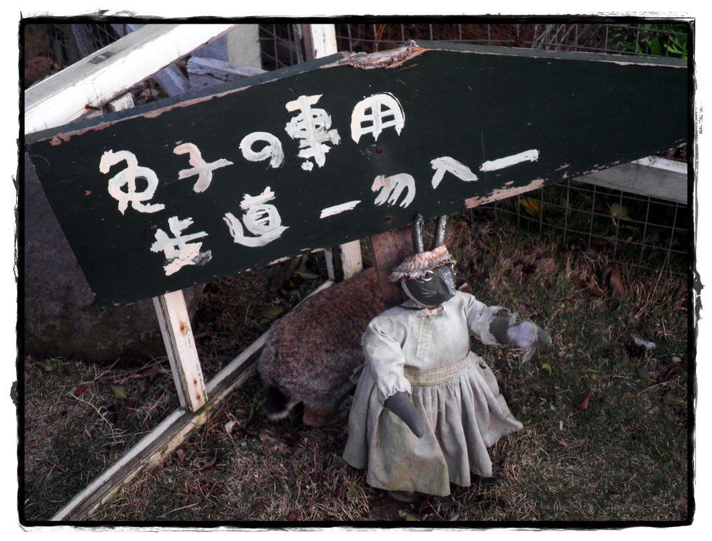 兔子P2270152 20110227.JPG