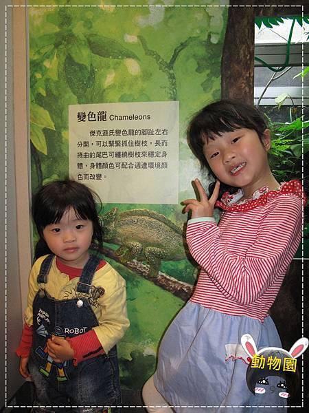 動物園IMG_8067.JPG