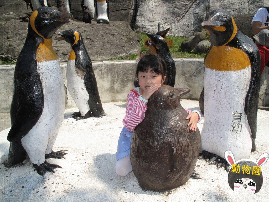 動物園IMG_8082.JPG