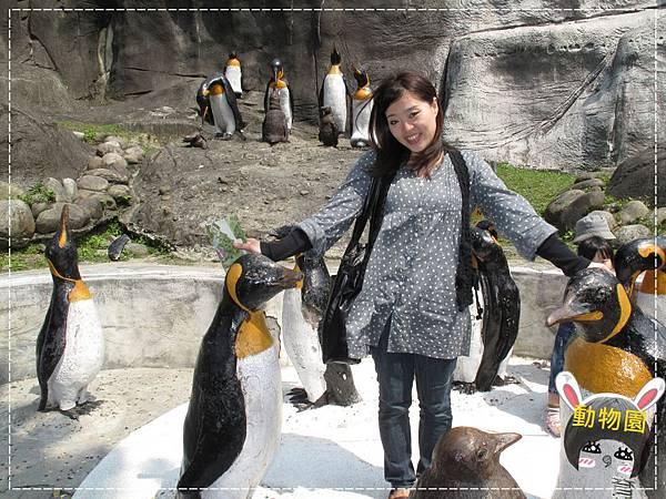 動物園IMG_8084.JPG