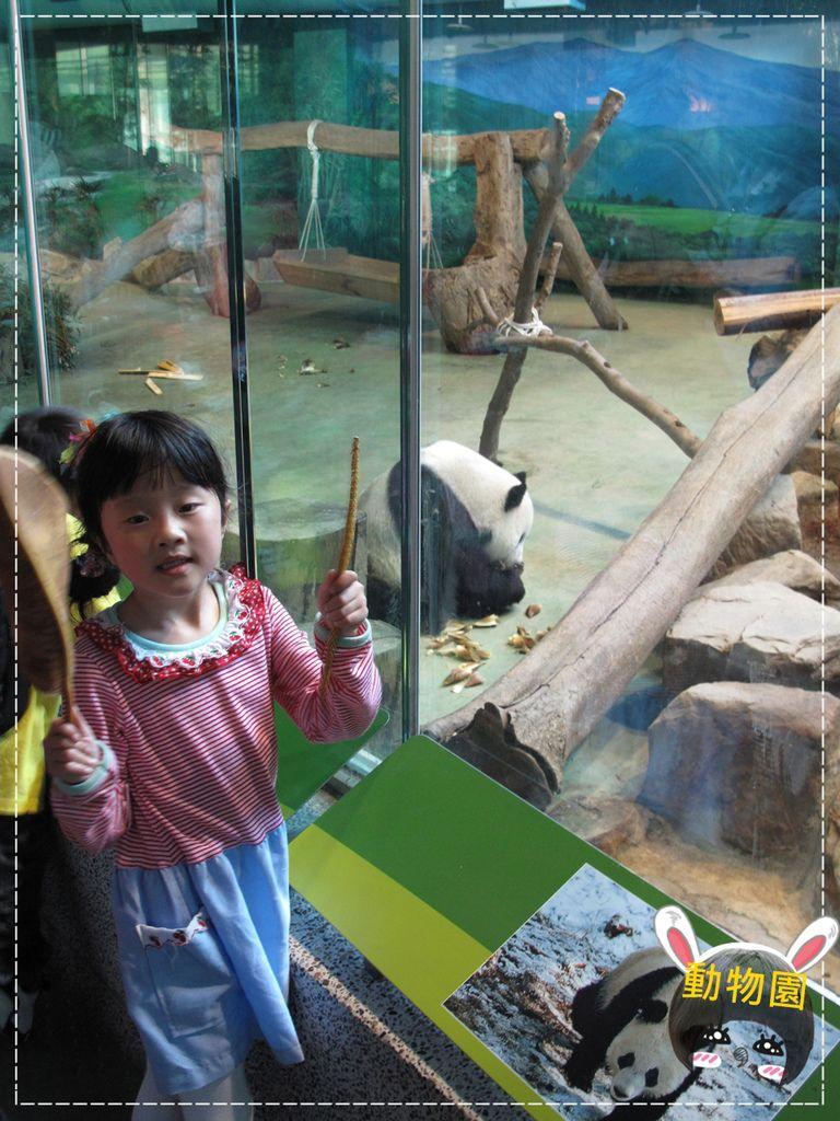 動物園IMG_8157.JPG