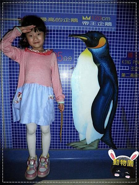 動物園P4010149-1.JPG