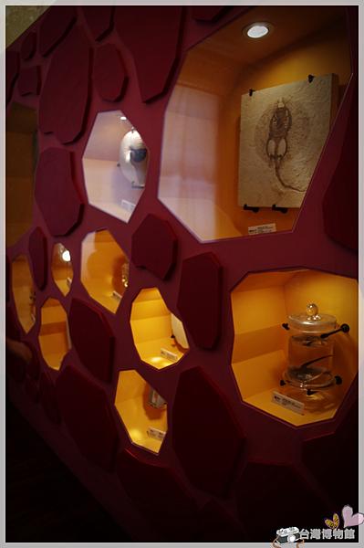 台灣博物館IMGP2259.png