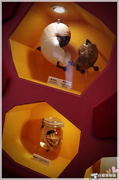台灣博物館IMGP2262.png