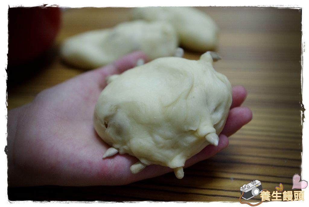 養生饅頭DIYIMGP3466.JPG