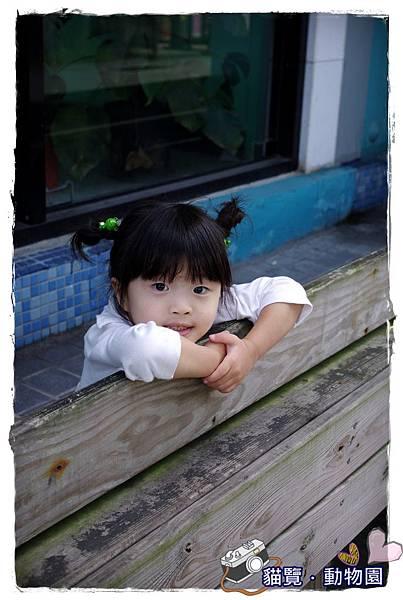 小MICA動物園IMGP4985.JPG