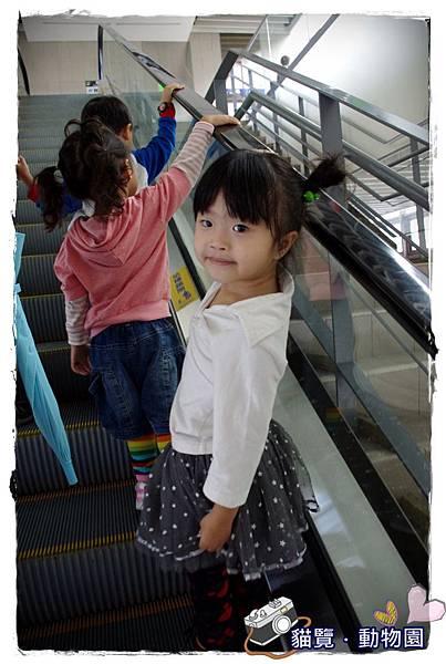 小MICA動物園IMGP4995.JPG