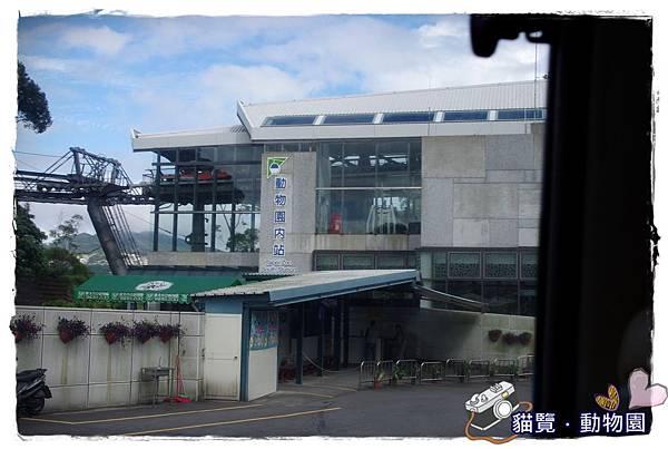小MICA動物園IMGP5026.JPG