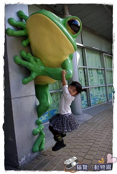 小MICA動物園IMGP5044.JPG