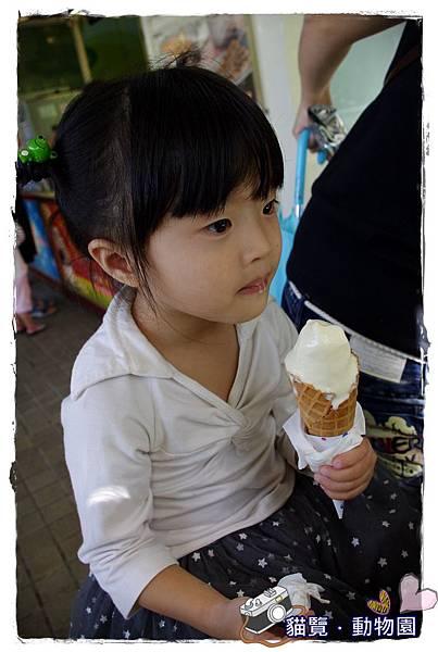 小MICA動物園IMGP5051.JPG