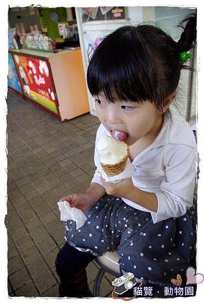 小MICA動物園IMGP5059.JPG