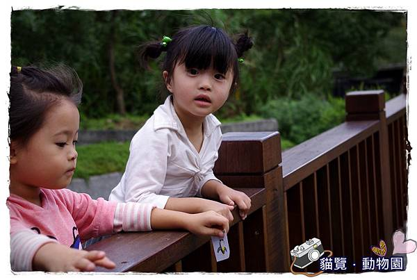 小MICA動物園IMGP5088.JPG