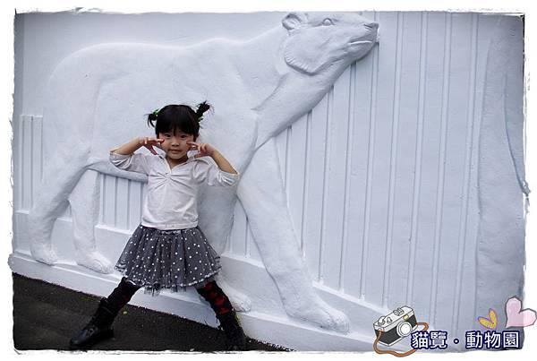 小MICA動物園IMGP5099.JPG