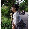 小MICA動物園IMGP5108.JPG
