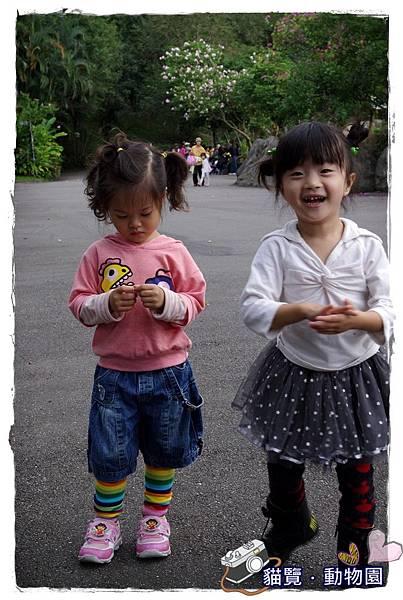 小MICA動物園IMGP5124.JPG