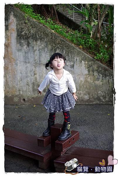 小MICA動物園IMGP5132.JPG