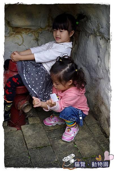 小MICA動物園IMGP5141.JPG