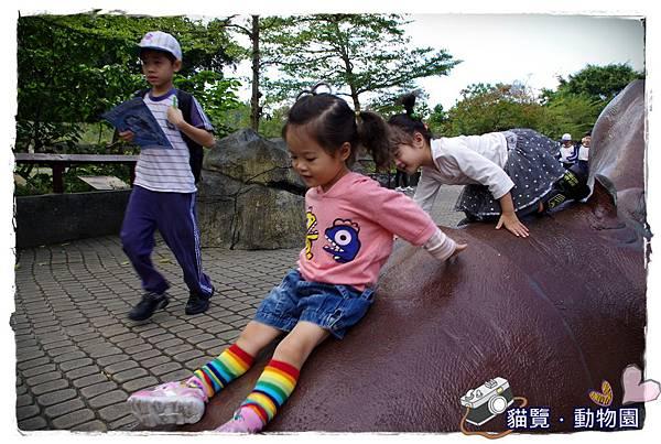 小MICA動物園IMGP5151.JPG