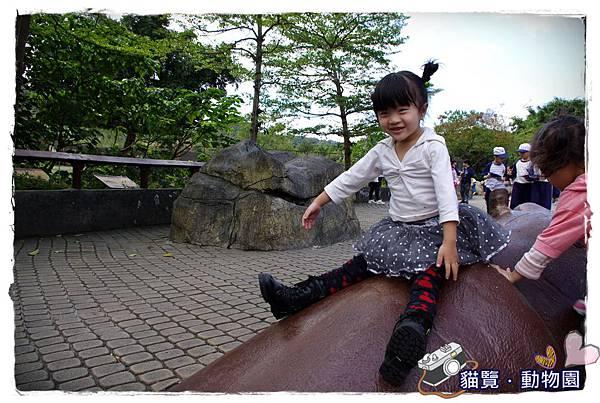 小MICA動物園IMGP5152.JPG