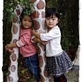 小MICA動物園IMGP5171.JPG