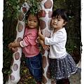 小MICA動物園IMGP5172.JPG