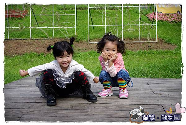 小MICA動物園IMGP5189.JPG