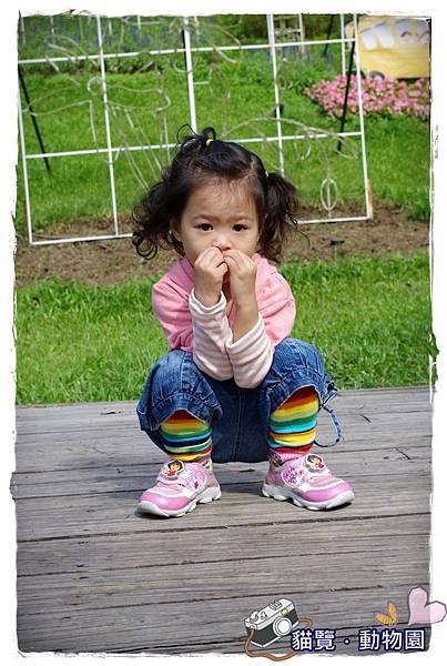 小MICA動物園IMGP5193.JPG
