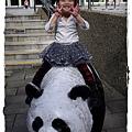 小MICA動物園IMGP5202.JPG
