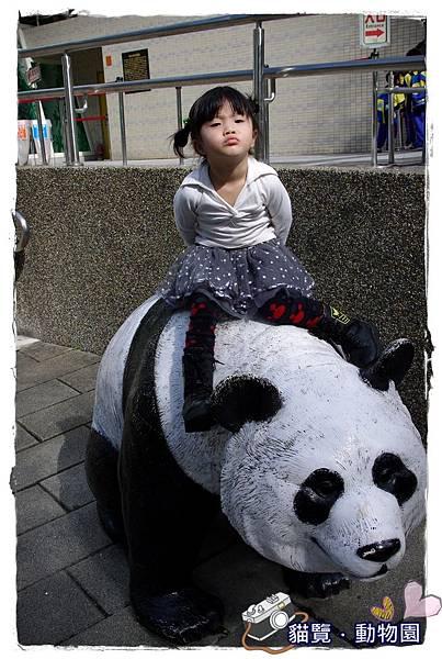 小MICA動物園IMGP5206.JPG