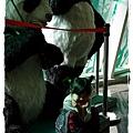 小MICA動物園IMGP5211.JPG
