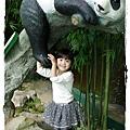 小MICA動物園IMGP5213.JPG