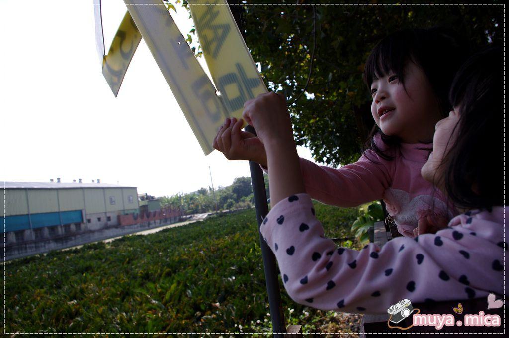 高雄義大三日遊day1 IMGP5891