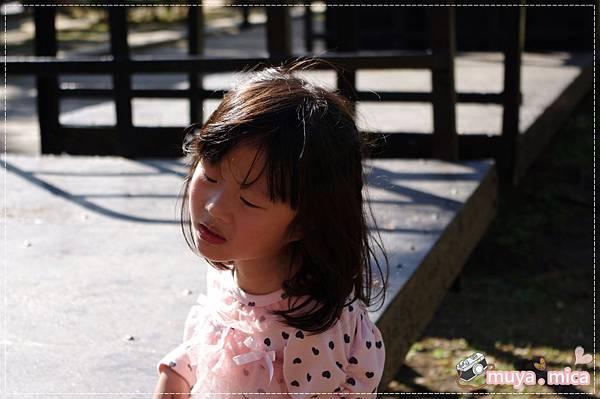 高雄義大三日遊day1 IMGP5997