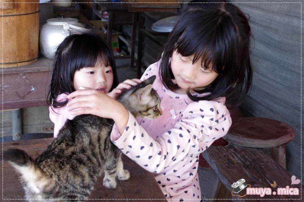 高雄義大三日遊day1 IMGP6106