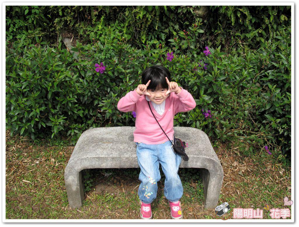 陽明山花季IMG_2565