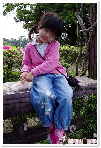 陽明山花季IMGP7084