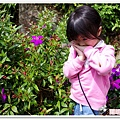 陽明山花季IMGP7110
