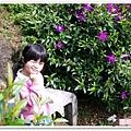 陽明山花季IMGP7117