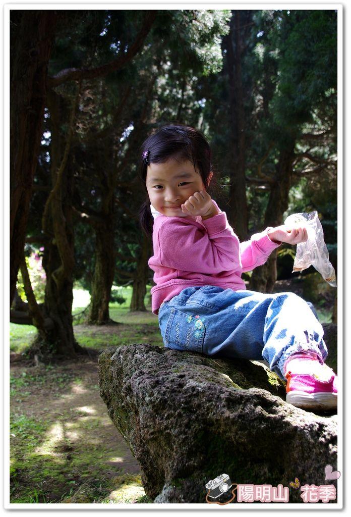 陽明山花季IMGP7128