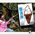 陽明山花季IMGP7142