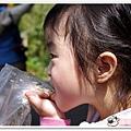 陽明山花季IMGP7146