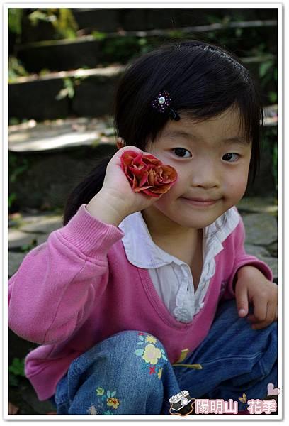陽明山花季IMGP7180