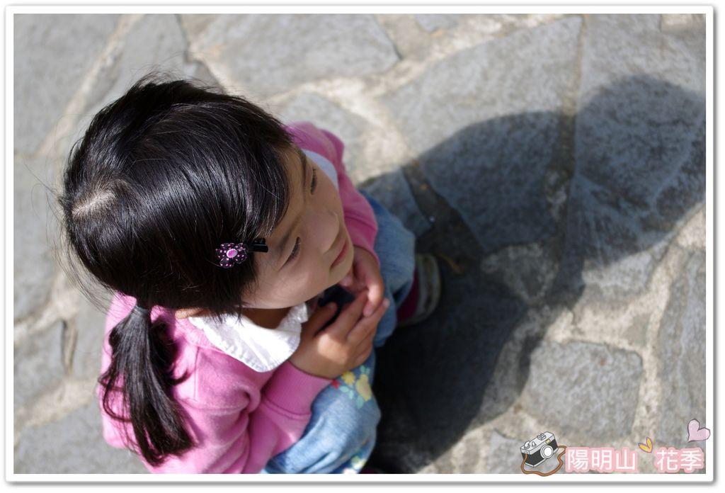 陽明山花季IMGP7187